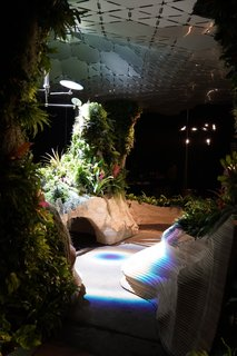 At the Lowline Lab, more than 3,000 plants grow under natural sunlight in an architectural landscape designed by Signe Nielsen of Mathews Nielsen and built by John Mini Distinctive Landscapes. The installation is meant to test which species will grow best underground.