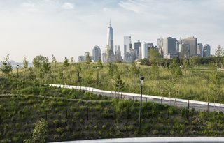 The planting plan was designed to provide viewing corridors toward the city, with visitors enjoying 360-degree vistas from the top of Outlook, the tallest hill, and scenes of the Financial District skyline from Grassy Hill, seen here. Some 830 trees from 32 species selected for their size, color, and heartiness—including a variety of oaks and sassafras—were planted on The Hills, with a mix of balled-and-burlapped and container techniques.