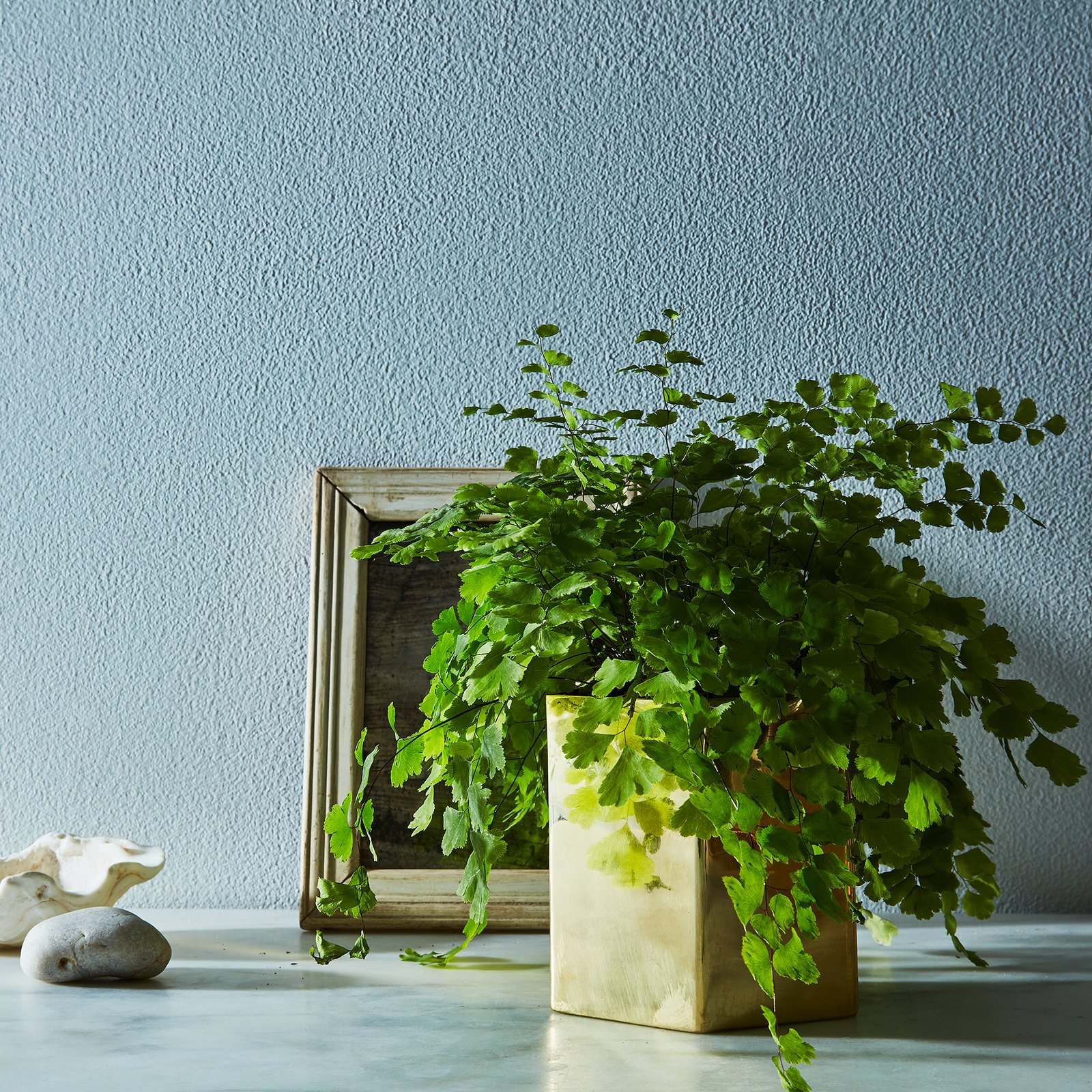 Rose & Fitzgerald Pure Brass Geometric Planter