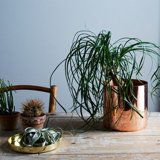Hawkins New York Copper and Brass Louise Planters