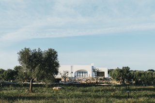 Masseria Moroseta by Andrew Trotter - Photo 3 of 3 -