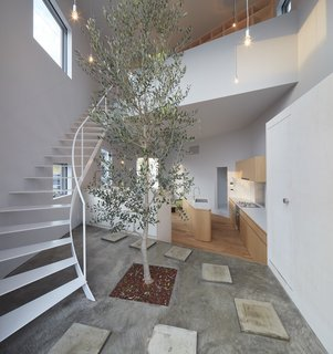 A tree planted at the foot of the stairwell, large-scale windows, and a double-height ceiling help integrate the surrounding nature with the home's light-filled interior.