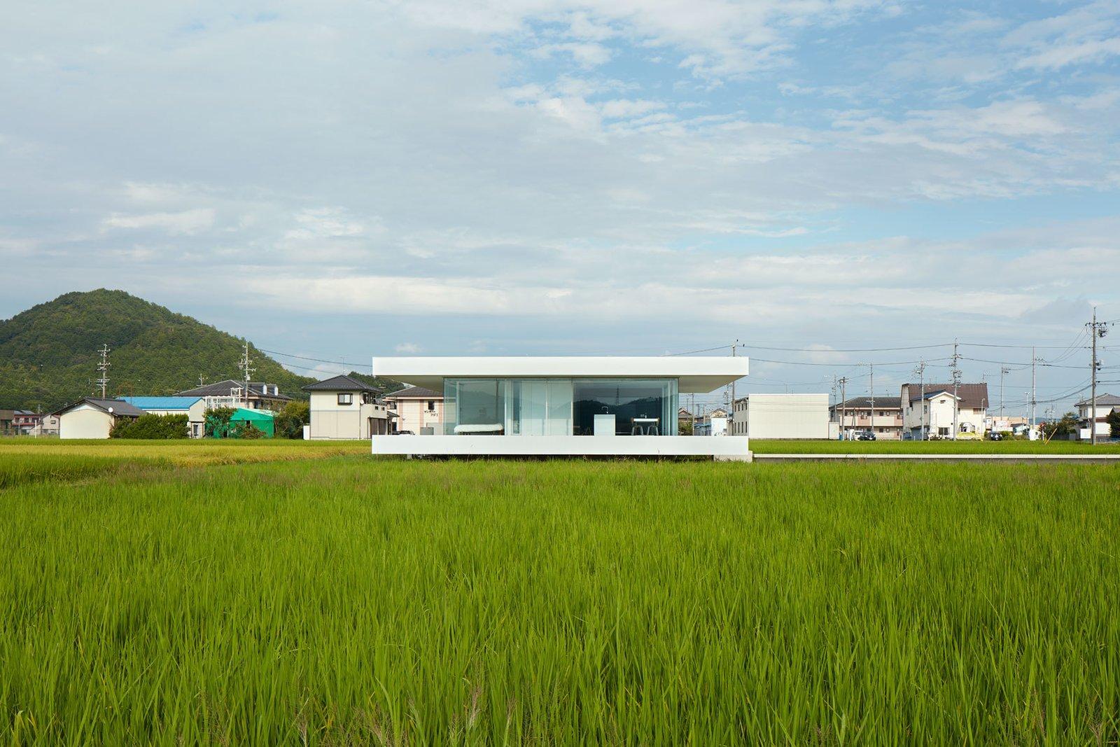 Photo 8 of 12 in F Residence by Shinichi Ogawa & Associates