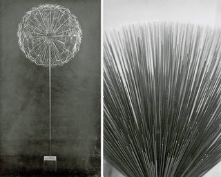 Black & white photographs of Harry Bertoia's Sonambient sculptures.