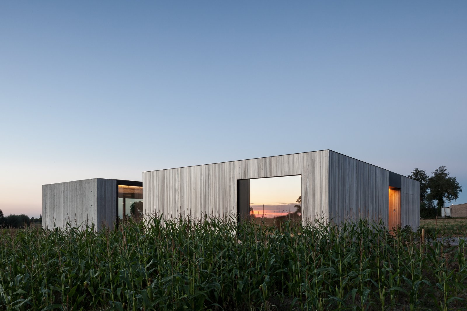 Exterior, Flat RoofLine, House Building Type, and Wood Siding Material  Photo 1 of 14 in Defying traditionalism: concrete bungalow inserted in a rural Belgian landscape