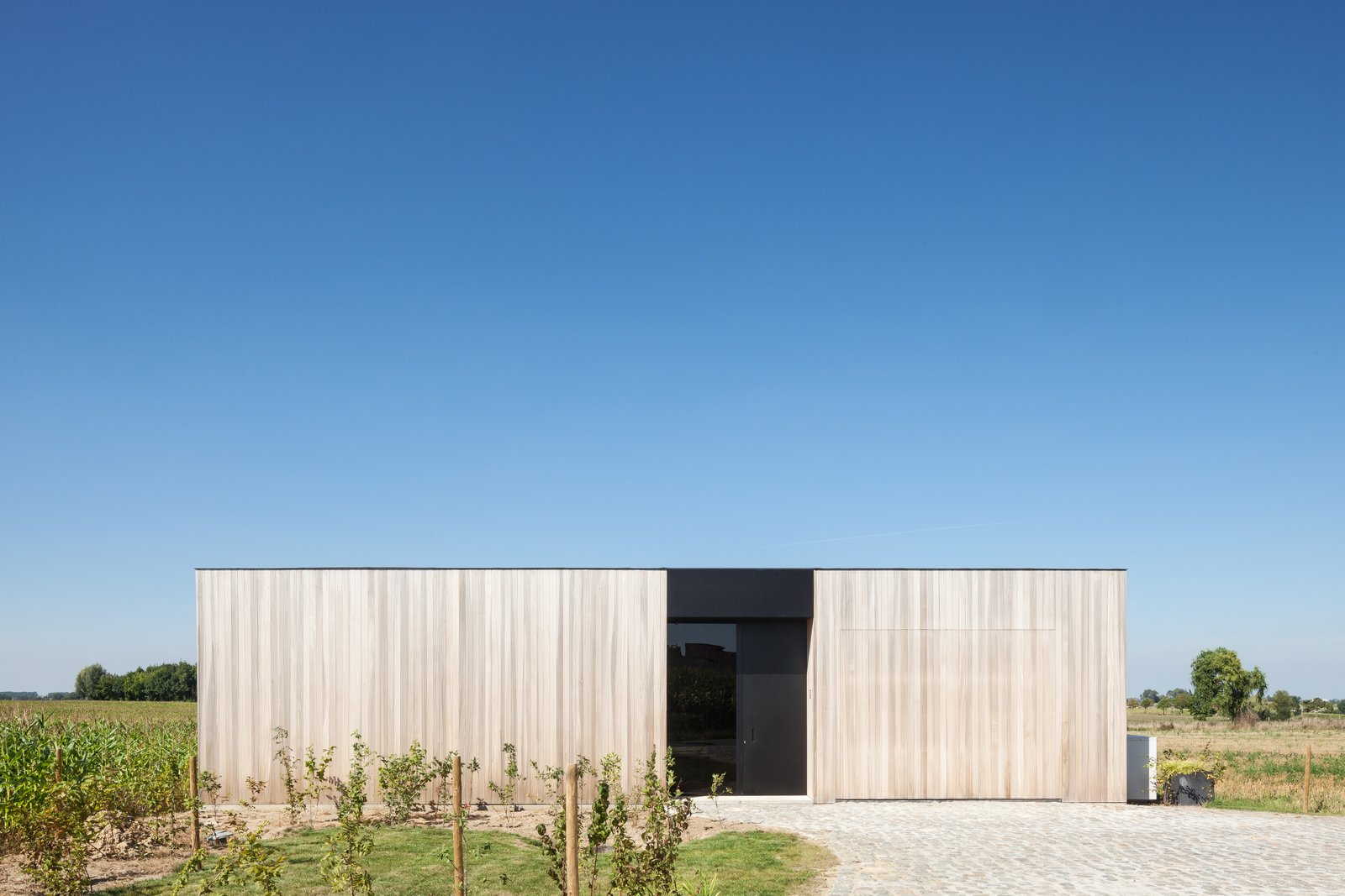 Exterior, House Building Type, Wood Siding Material, and Flat RoofLine  Photo 3 of 14 in Defying traditionalism: concrete bungalow inserted in a rural Belgian landscape