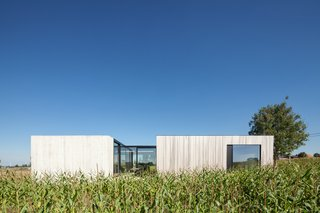 Defying traditionalism: concrete bungalow inserted in a rural Belgian landscape - Photo 4 of 13 -