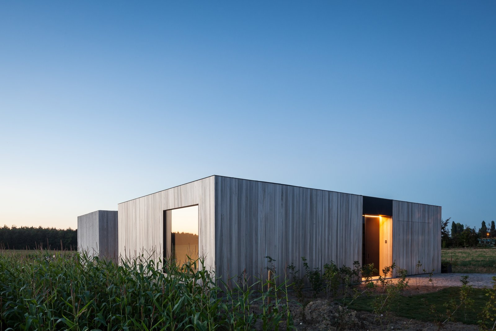 Exterior, House Building Type, Wood Siding Material, and Flat RoofLine  Photo 13 of 14 in Defying traditionalism: concrete bungalow inserted in a rural Belgian landscape