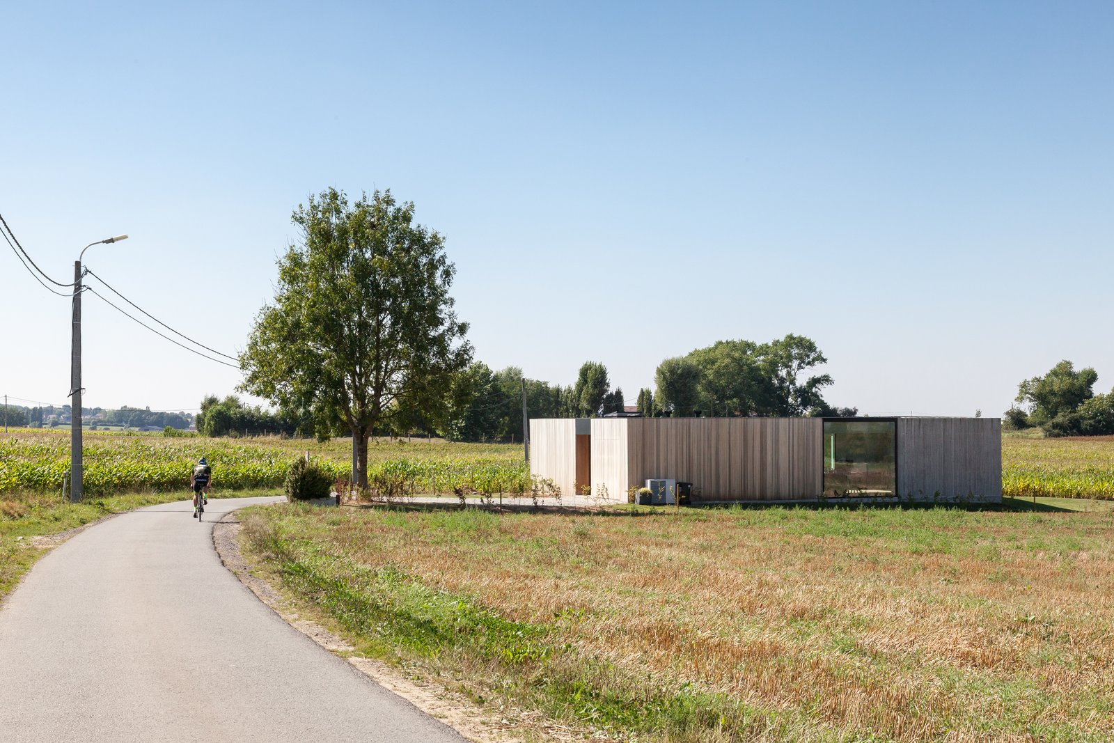 Outdoor, Field, Front Yard, Walkways, Grass, and Trees  Photo 2 of 14 in Defying traditionalism: concrete bungalow inserted in a rural Belgian landscape