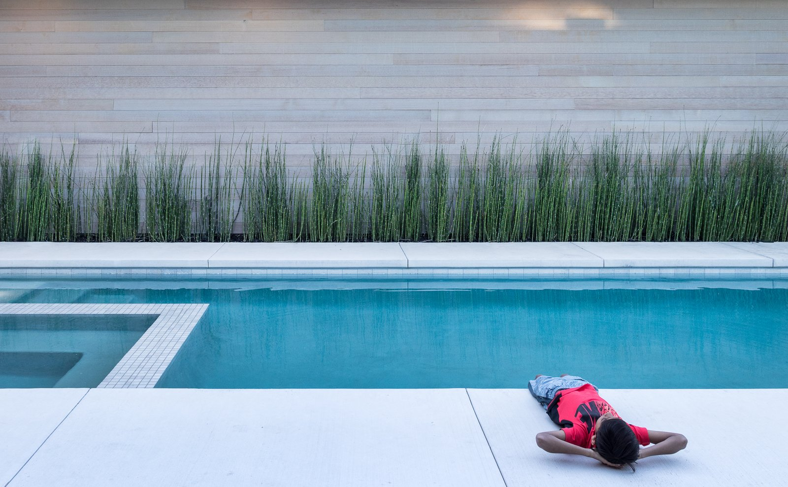 Outdoor, Back Yard, Shrubs, Swimming, Large, Concrete, Grass, and Hardscapes  Best Outdoor Swimming Hardscapes Photos from Folsom