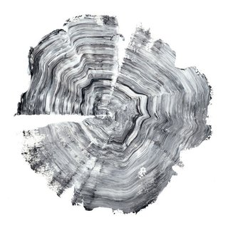 Tree Ring Abstract IV by NW Art