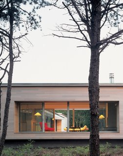 Viewed from the street, the house's kitchen/living area—raised on a platform with massive picture windows—resembles a stage. Banks and Lazar plan to enhance the privacy by planting trees and shrubs.