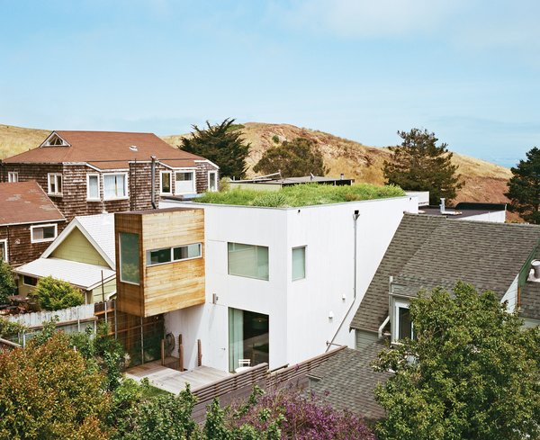 Liang's 580-square-foot green roof is like a piece of the hill; its indigenous vegetation—seeded by birds and wind—is irrigated only by seasonal rain and dew. Purple thistles, California poppies, clover, and dandelions have all taken root in the roughly ten-inch-deep, lightweight humus and grape-husk soil.
