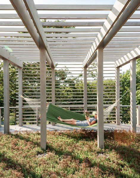 A second green roof is planted with sedum and plays host to one of the family's favorite spots: a hammock. The overhead trellis softens and balances the appearance of the facade.