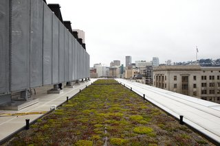 These 10 Green Roofs Bring Life—and So Much More—to These Modern Structures - Photo 7 of 11 - A living roof is among the project's many green features.