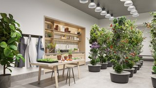 Along with art and music recording studios, Waterline Square will offer residents an indoor gardening studio—in addition to its outdoor version.