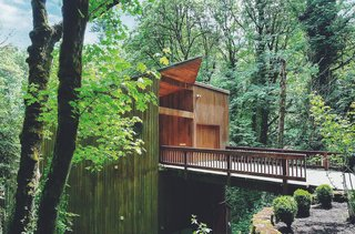 This Tree House For Rent Near Downtown Portland Doubles As an Art Platform - Photo 14 of 14 -