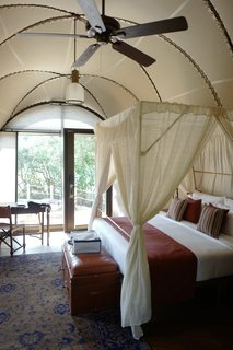 Stay in a Cocoon-Like Tent at a Safari Resort in Sri Lanka - Photo 4 of 14 -