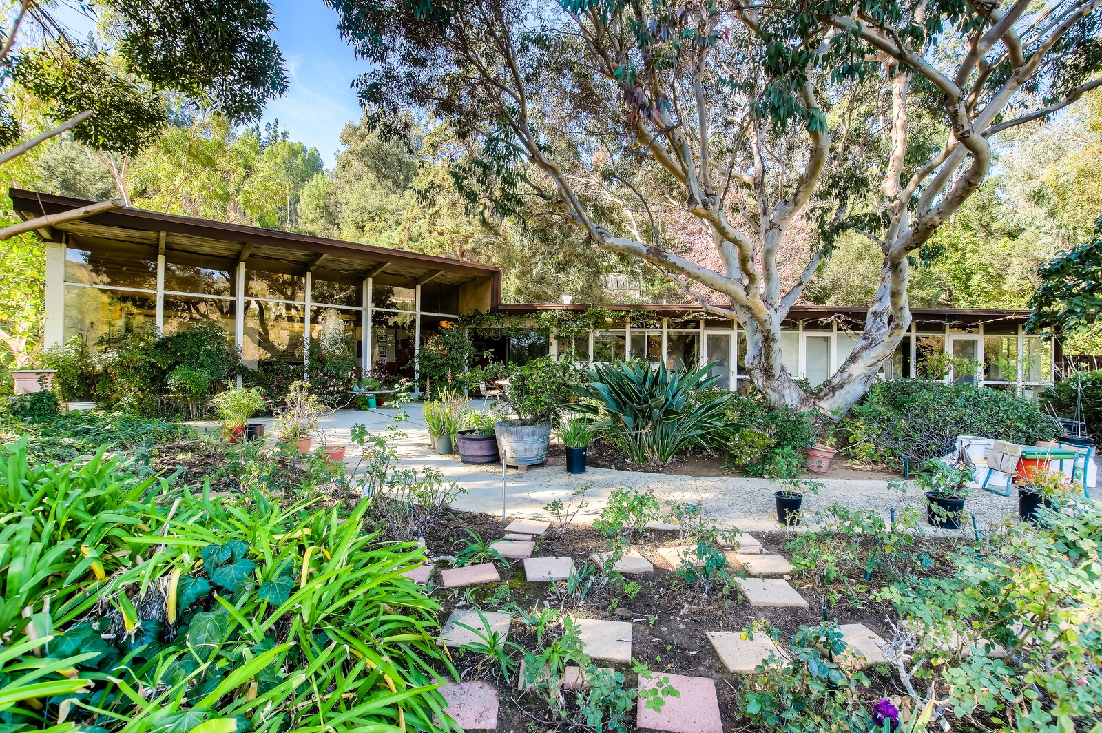 Outdoor, Shrubs, Garden, Walkways, Trees, and Gardens  Photo 9 of 10 in An Exceptional Midcentury by Case Study Architect Pierre Koenig Hits the Market