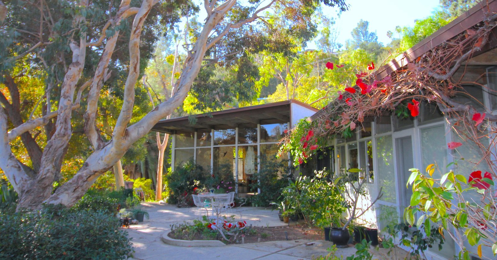 Outdoor, Flowers, Trees, Gardens, Garden, and Shrubs  Photo 10 of 10 in An Exceptional Midcentury by Case Study Architect Pierre Koenig Hits the Market