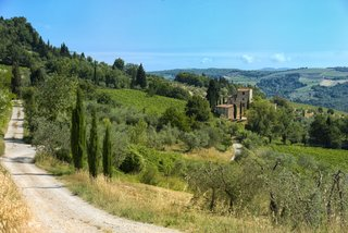 You Can Own Michelangelo's Former Tuscan Villa For $9.3M - Photo 11 of 11 - The property comes with six acres planted with cypress and olive trees.