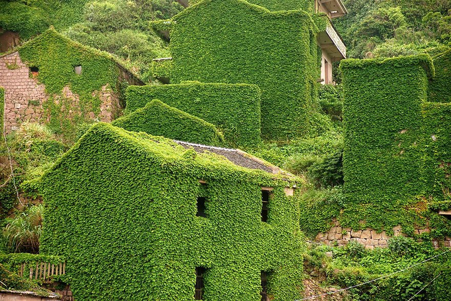 Covered in vibrant greenery, the abandoned structures are captivating and give new meaning to