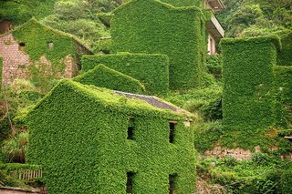 Covered in vibrant greenery, the abandoned structures are a captivating blend of built and natural environments.