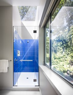 A bright bathroom is surrounded by tree views.