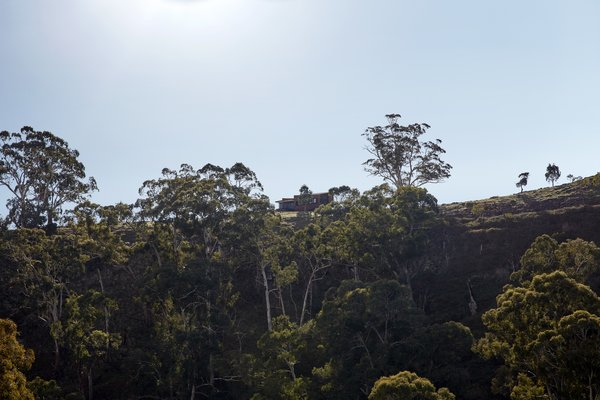 The home steeps in dramatic views of the gorge.