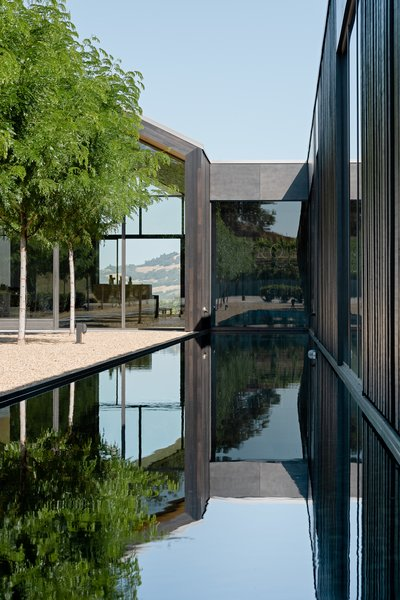 The mix of wood and steel references the construction of a wine barrel. A long rectangular reflecting pool runs the length of the tasting room.