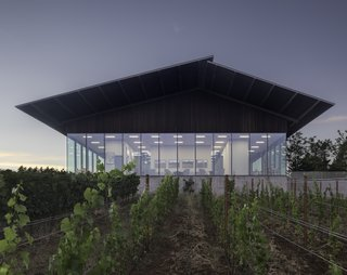 The new tasting room is positioned to feel as if it is hovering above and within the vineyard. Open on all sides, it offers panoramic views of the surrounding hills.