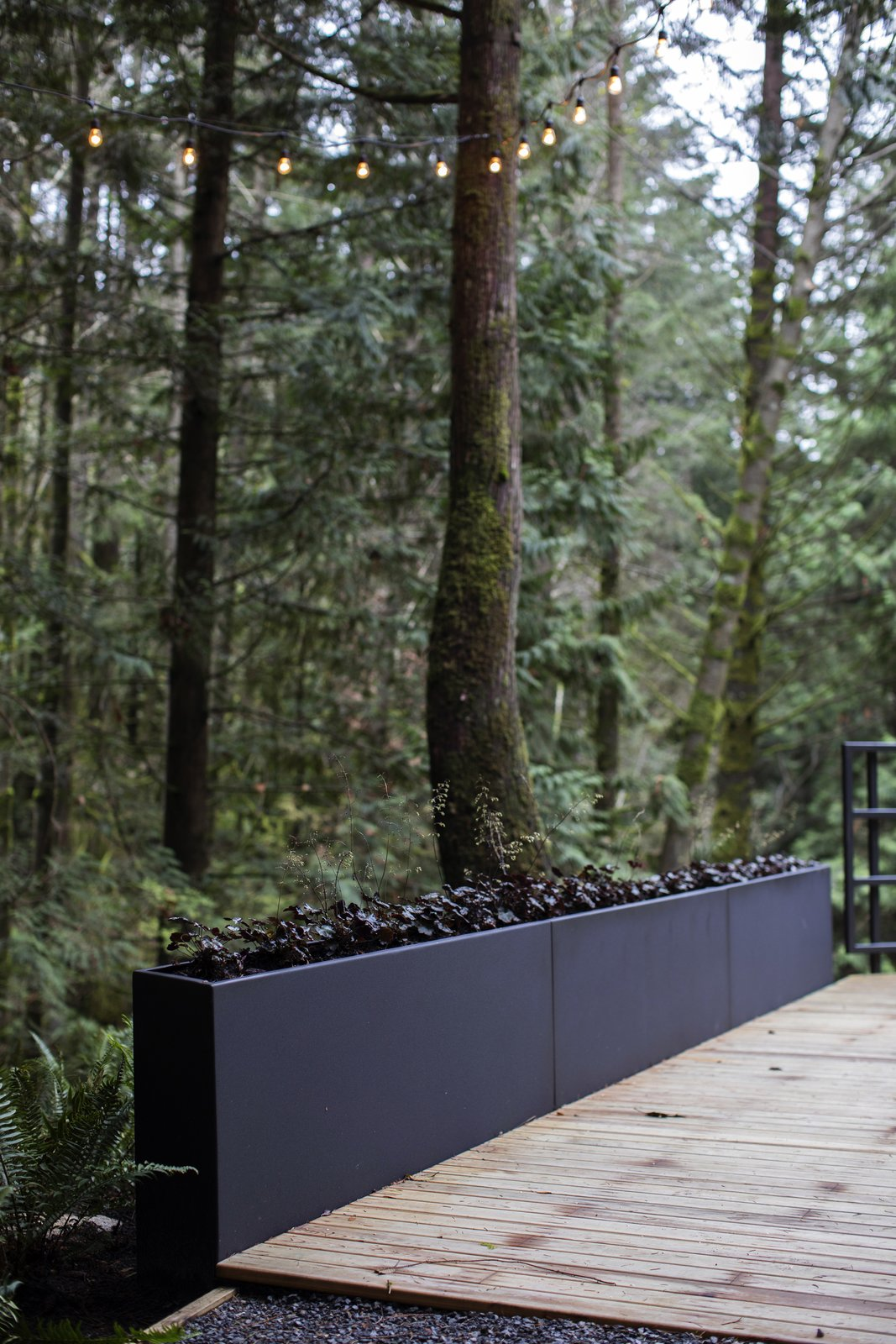 Cypress Falls by considered design inc from Landscape