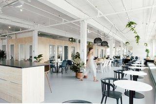 Step Inside Werklab: A Wellness-Focused Coworking Space
