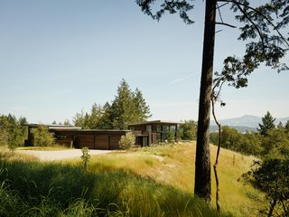 Arterra Landscape Architects revitalized the surrounding woodland, creating a natural, native environment for the home.