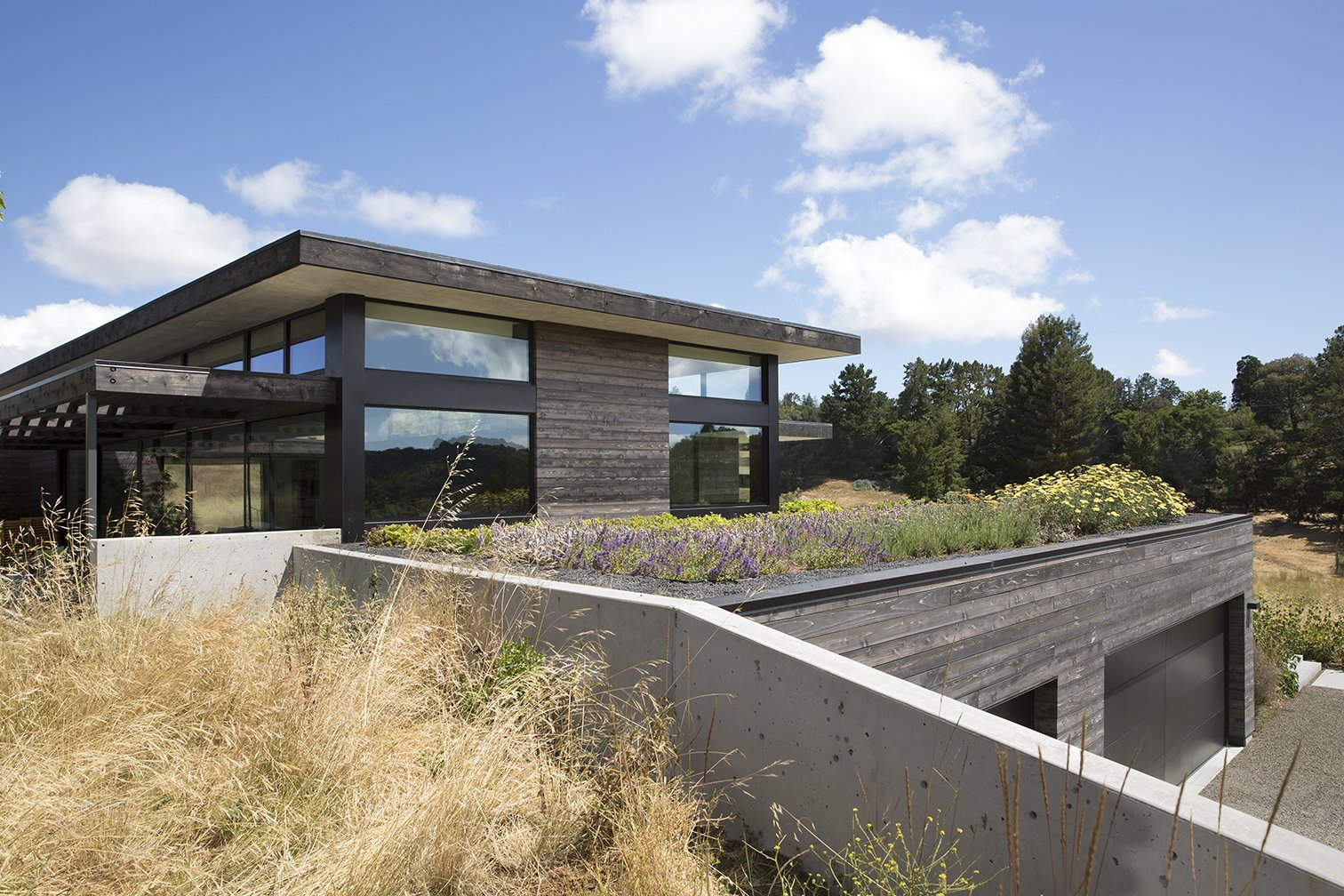 Exterior, Green Roof Material, and Wood Siding Material  The Meadow Home by Feldman Architecture