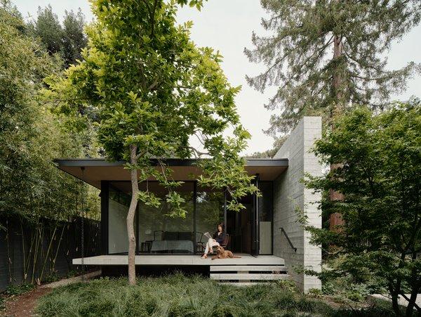 Best 60 Modern Outdoor Small Patio Porch Deck Shrubs Design