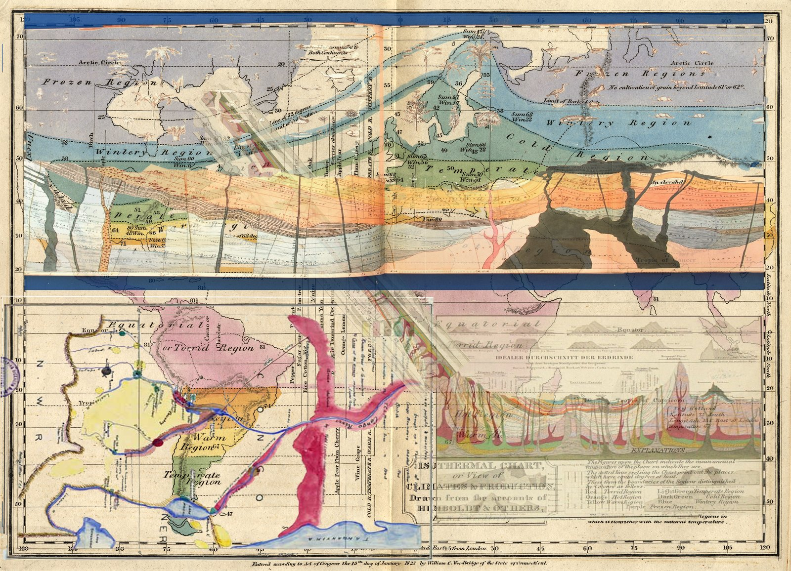 Detailed Drawings From Ethnobotonaist Alexander Von Humboldt