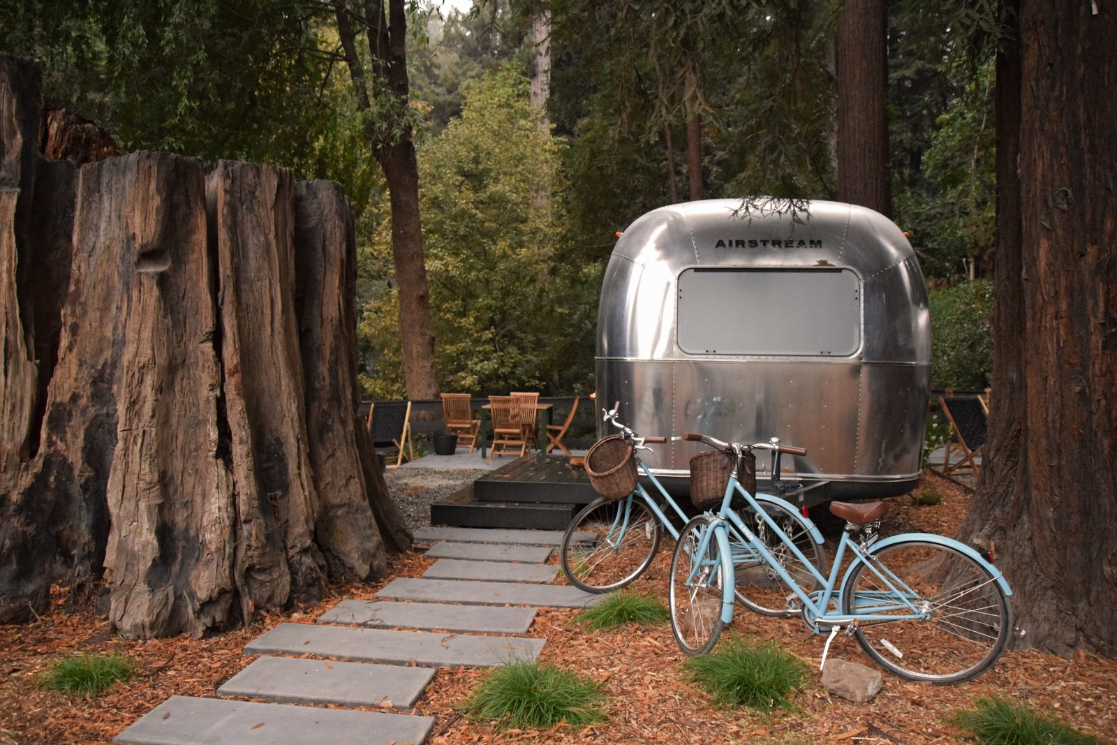 A thousand-year-old redwood stump abuts an Airstream suite.