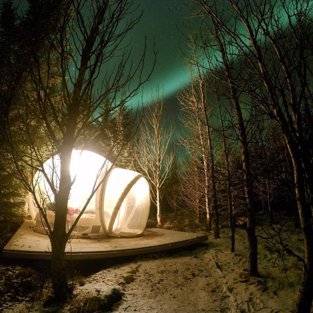 Outdoor, Trees, Woodland, and Wood Patio, Porch, Deck  Photo 6 of 6 in Sleep Under the Northern Lights in an Icelandic Bubble Hotel