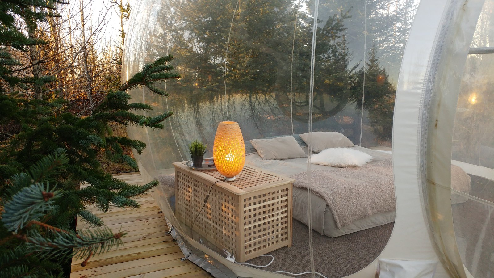 Outdoor, Trees, Woodland, and Wood Patio, Porch, Deck  Photo 2 of 6 in Sleep Under the Northern Lights in an Icelandic Bubble Hotel