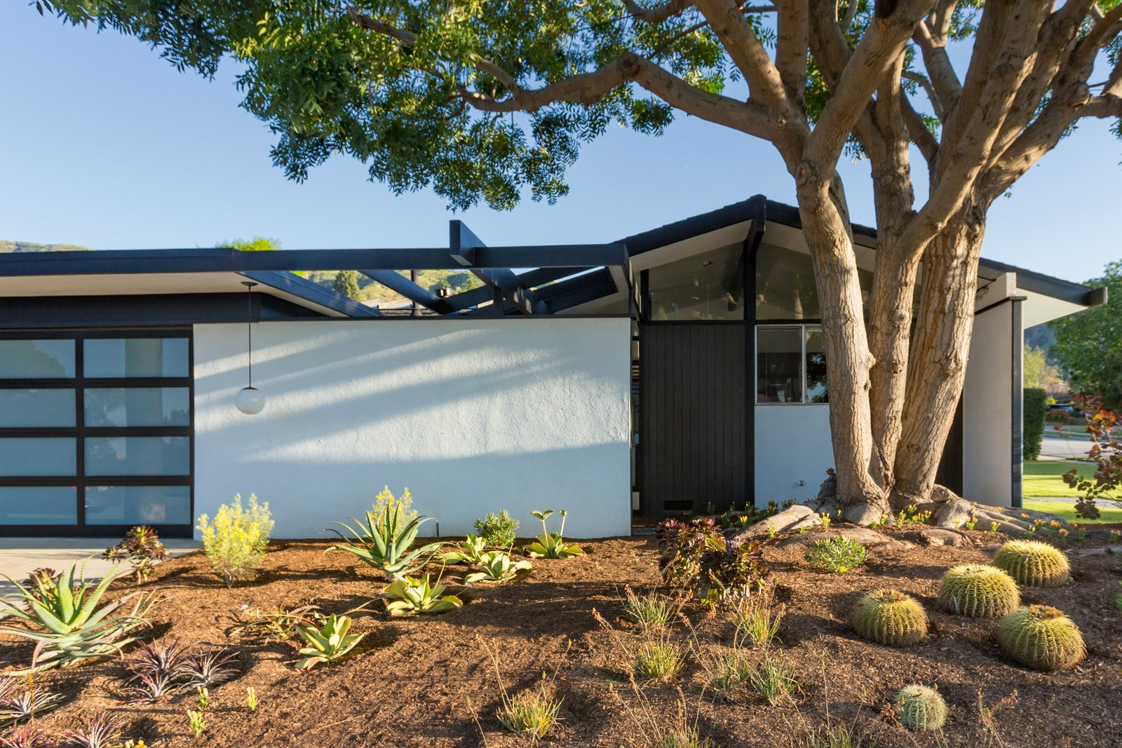 Outdoor, Front Yard, and Trees  Photo 2 of 14 in Offered at $899K, a Restored Midcentury Abode Shines in Southern California