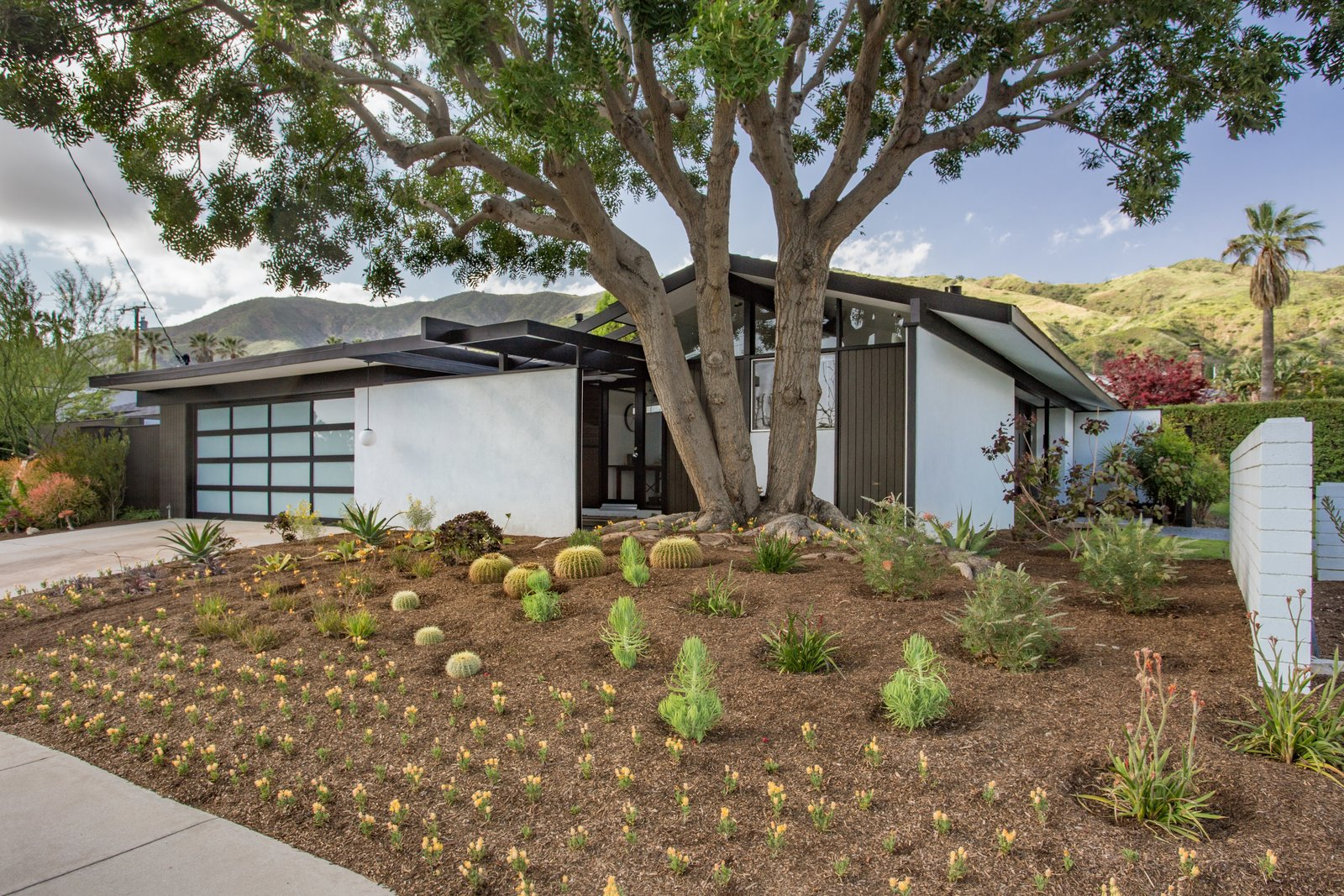Outdoor, Front Yard, and Trees  Photo 1 of 14 in Offered at $899K, a Restored Midcentury Abode Shines in Southern California