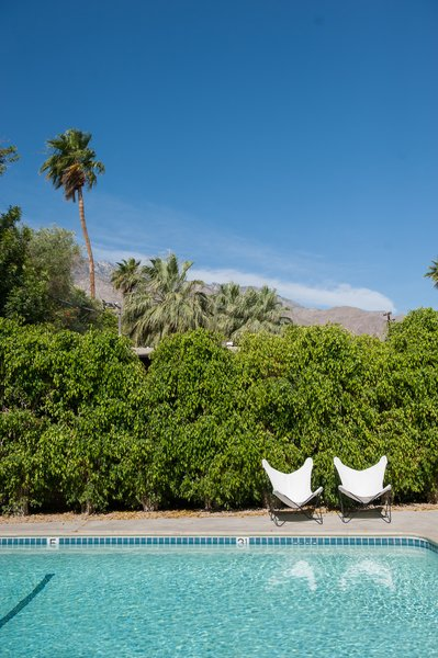 Outdoor, Shrubs, Swimming Pools, Tubs, Shower, Concrete Patio, Porch, Deck, Desert, Large Pools, Tubs, Shower, Back Yard, and Trees  Photo 8 of 12 in A Celebrated Palm Springs Hotel Asks $1.8M