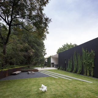 A Black Stucco Home in Dallas Is Surrounded by Eye-Popping Greenery - Photo 3 of 18 -