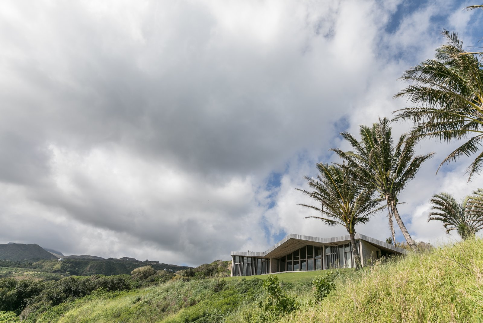 Outdoor, Front Yard, and Trees  The Clifftop House by Modern on Maui - Liam Ball