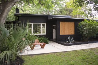 Don't forget to consider the backdrop that your plants will be seen against. In Rachel and Andrew's garden—the couple behind YIELD Design Co.—they created a modern contrast between the tropical plants and the new coat of black paint on the exterior.