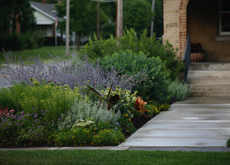 Outdoor, Front Yard, Walkways, Grass, Flowers, And Shrubs Modern Perennial  Plants