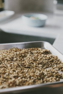 Alpine Granola - Photo 1 of 1 -