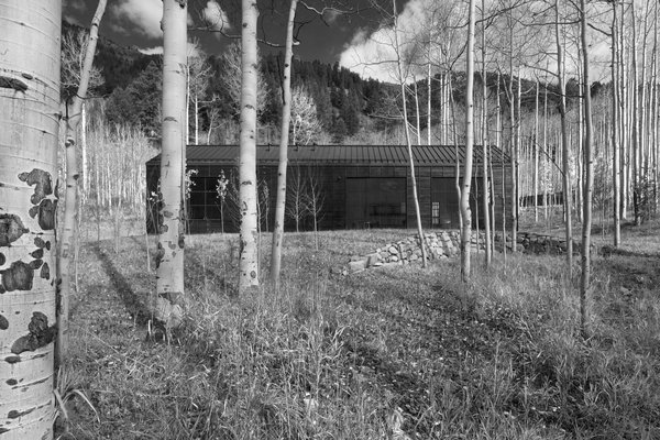 Retreat in the Aspen Grove
