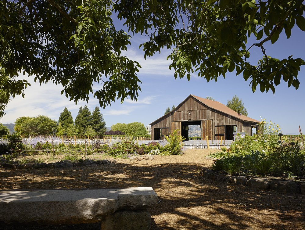 Outdoor, Back Yard, and Gardens  Napa Vineyard Barn by Centric General Contractors
